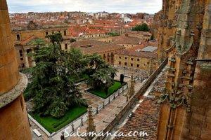 Ieronimus, Salamanca