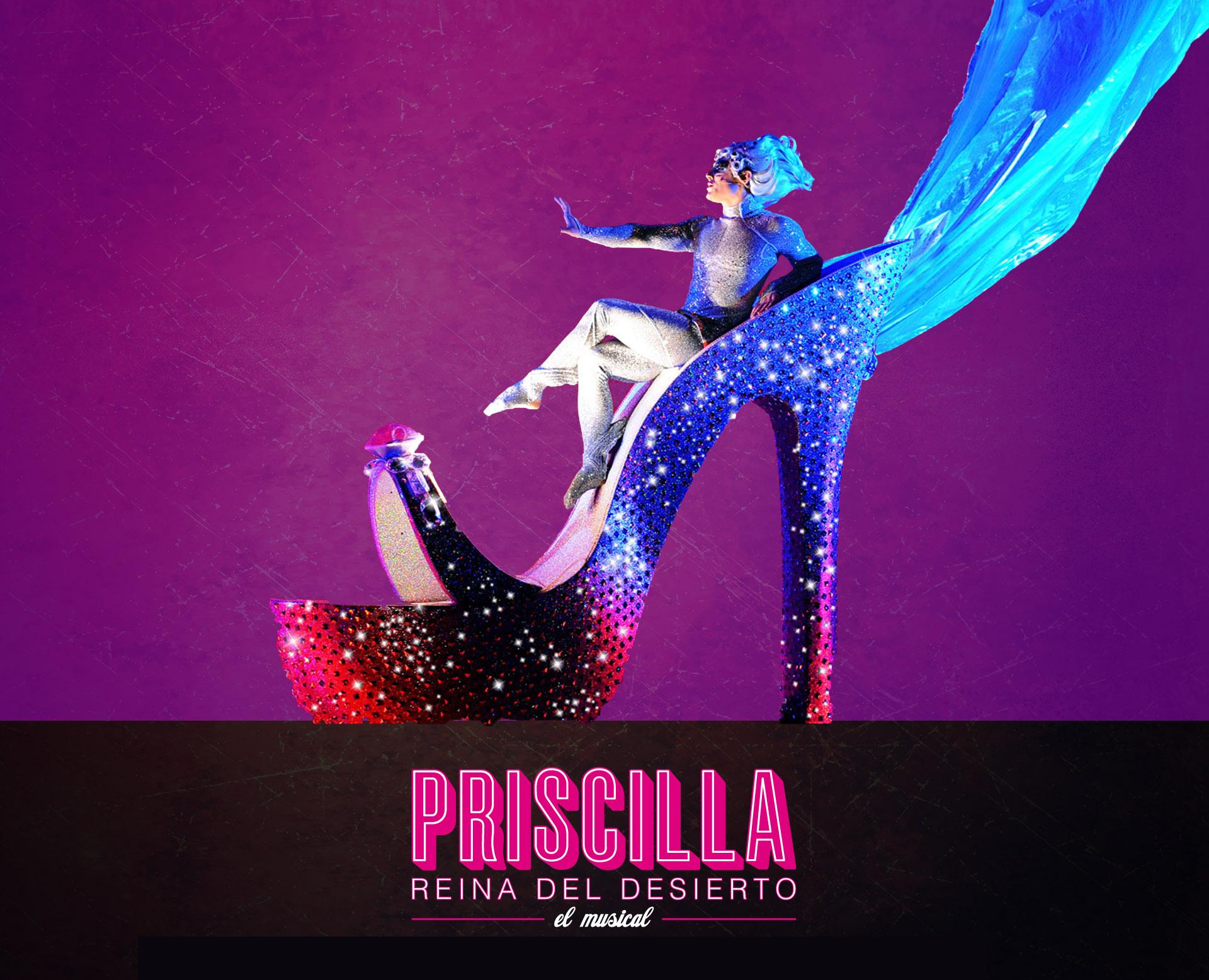 Priscilla. Reina del desierto, CAEM, Salamanca