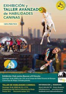 Club Deportivo Canino Baucan y El Vínculo