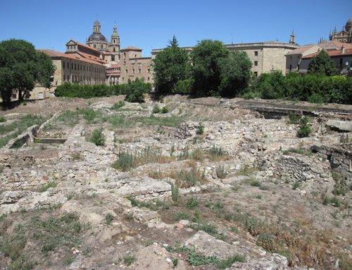 Ciudadanos por la Defensa del Patrimonio reclama la intervención de las Administraciones para frenar la destrucción definitiva de El Botánico.