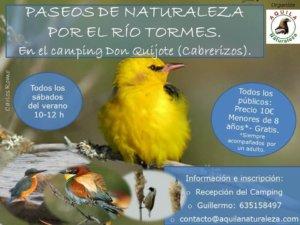 Aquila Naturaleza