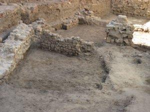 Ciudadanos por la Defensa del Patrimonio, Salamanca
