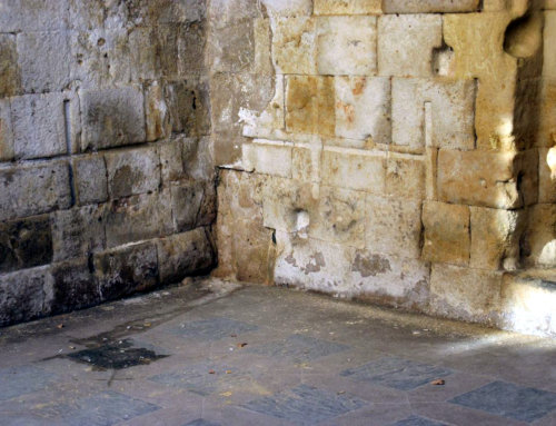 La Cueva de Salamanca en riesgo: La cripta de San Cebrián gravemente afectada por la humedad.
