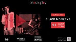 Black Monkeys Centro Comercial Vialia Salamanca Octubre 2017