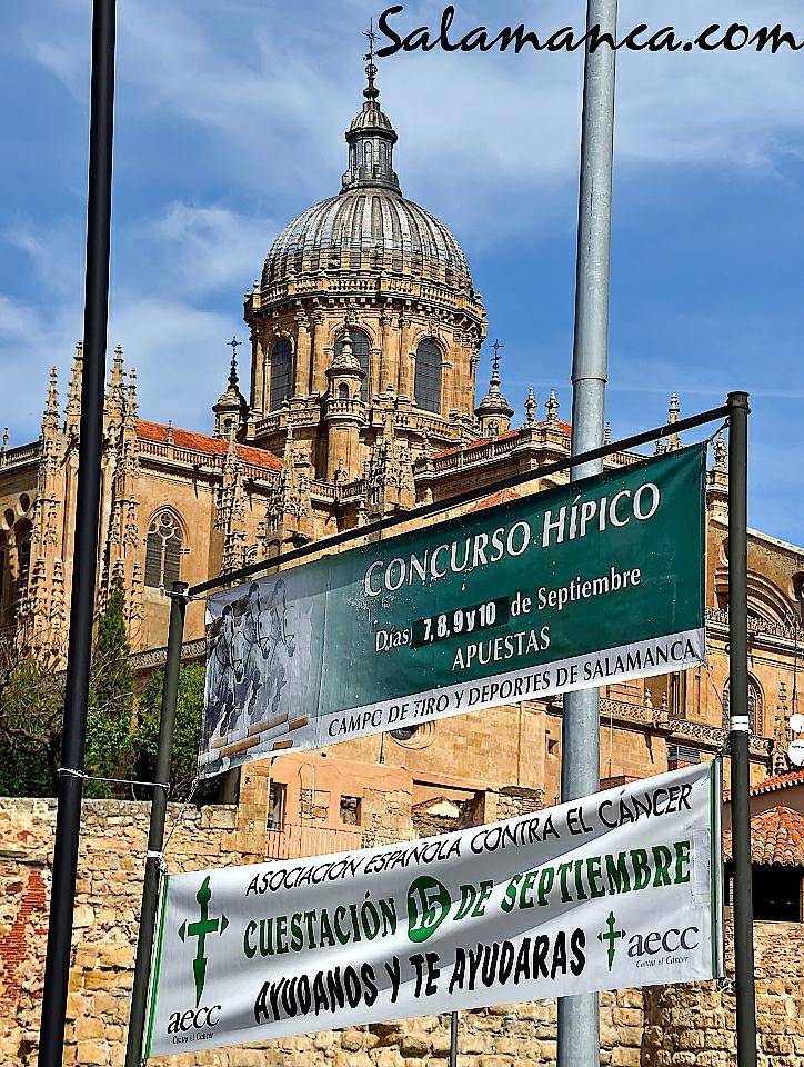 Salamanca.com, Archivo