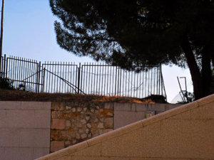 La Junta de Castilla y León pone fecha al correcto vallado de El Botánico
