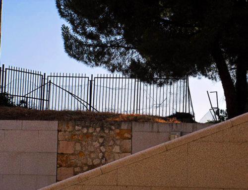 La Junta de Castilla y León pone fecha al correcto vallado de El Botánico.