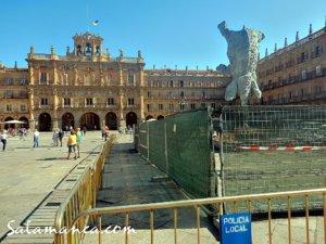 El Arca de Noé, Salamanca 2017
