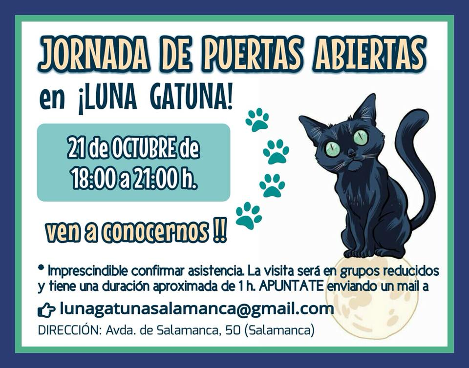 Jornada de Puertas Abiertas Luna Gatuna Salamanca Octubre 2017