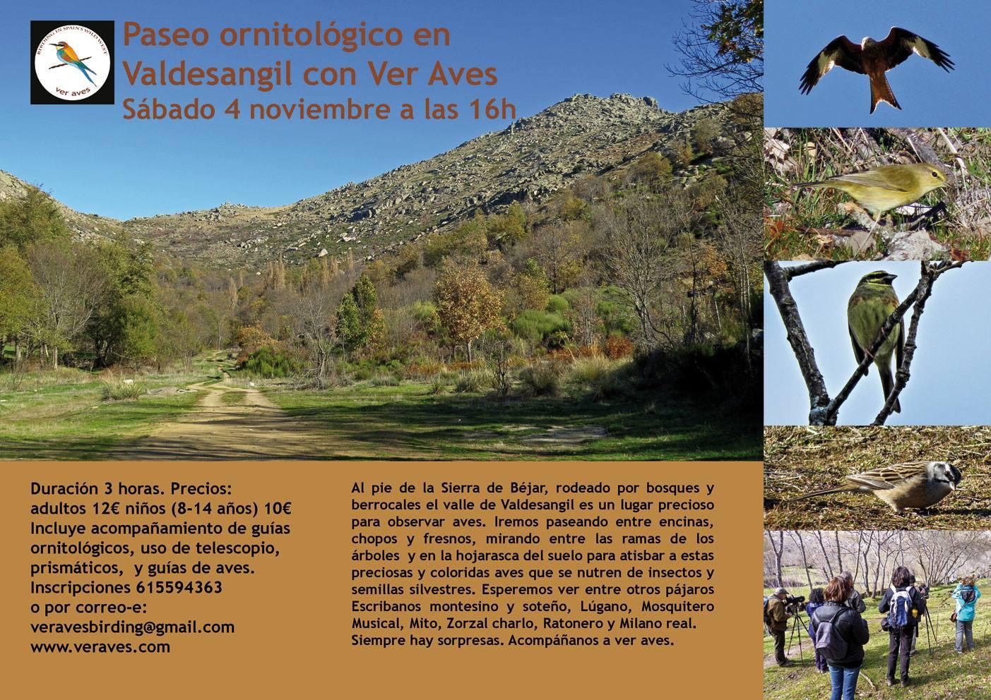 Ruta Ornitológica en Valdesangil Ver Aves Noviembre 2017