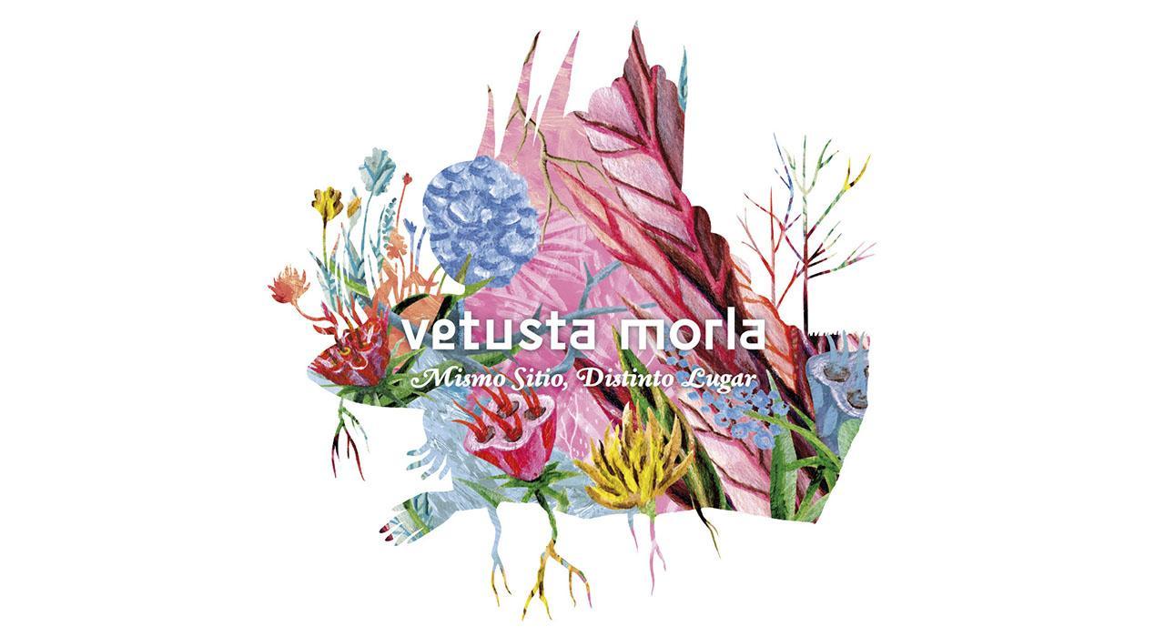 Vetusta Morla Mismo sitio, distinto lugar Sánchez Paraíso Salamanca Abril 2018