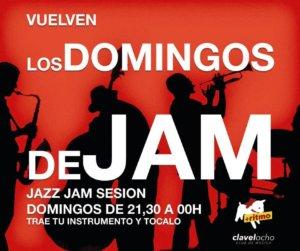 Clavel Ocho Los Domingos de Jam Salamanca 2017-2018