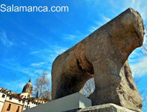 El Museo Taurino de Salamanca reabre sus puertas con un mes de visitas gratuitas.