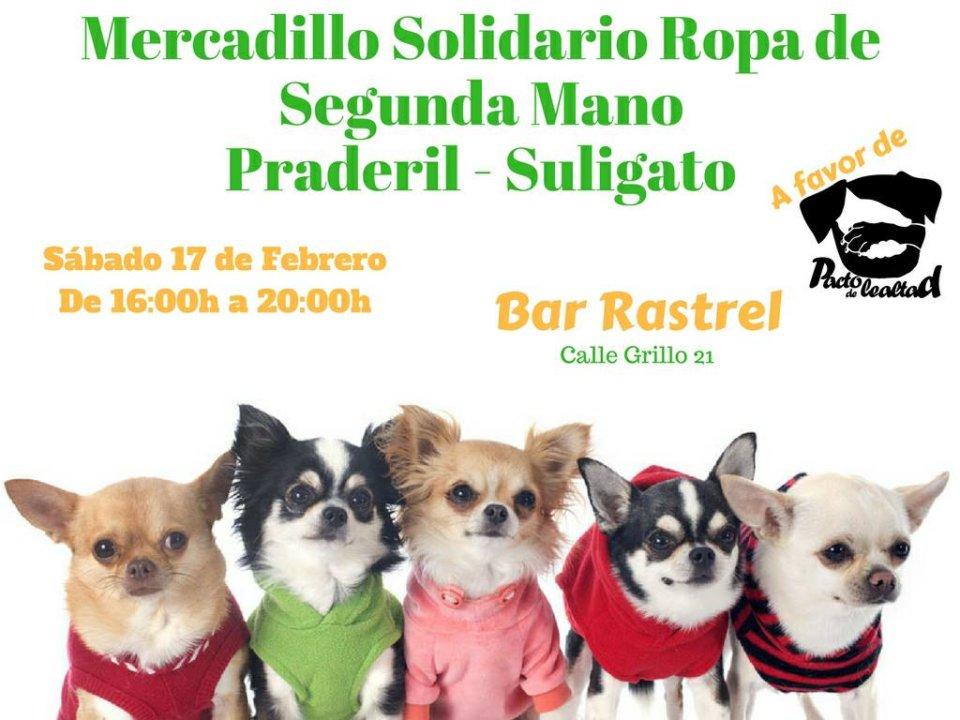 El Rastrel Mercadillo Solidario de Segunda Mano Salamanca Febrero 2018
