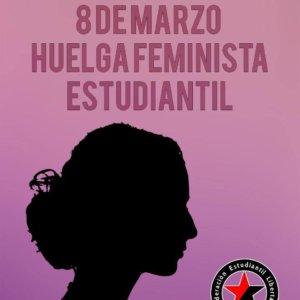 Huelga 8M Federación Estudiantil Libertaria Salamanca