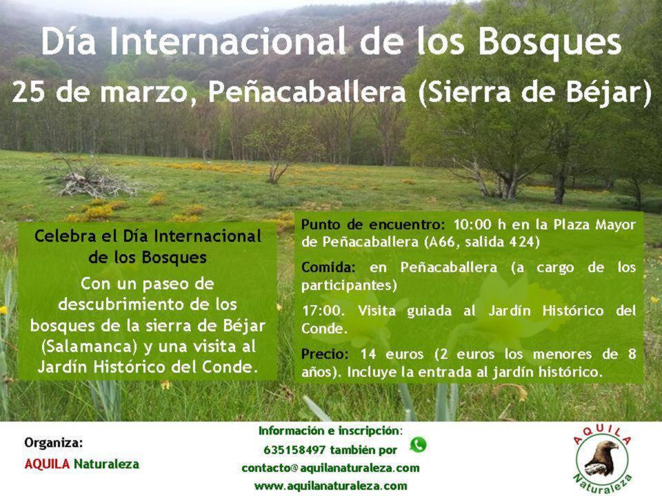 Peñacaballera Día Internacional de los Bosques Aquila Naturaleza Marzo 2018