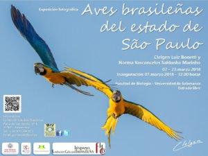 Facultad de Biología Aves brasileñas del estado de São Paulo Salamanca Marzo 2018