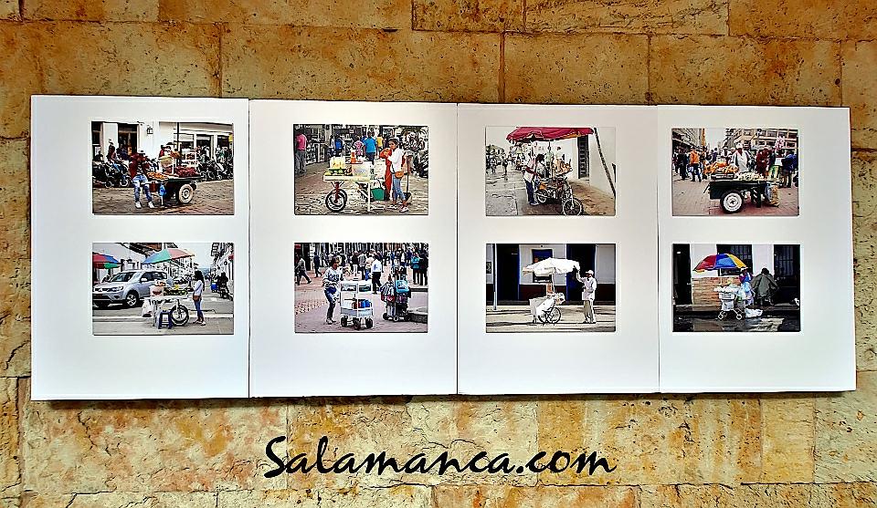 Casa de las Conchas Ambulantes Salamanca Marzo 2018