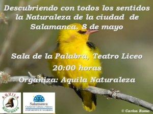 Teatro Liceo Guillermo Hernández Cordero Salamanca Mayo 2018