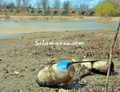 El Ayuntamiento de Salamanca solicitará a la CHD que repare la Pesquera del Tormes y limpiará el cauce del río que ha quedado al descubierto al bajar el caudal.