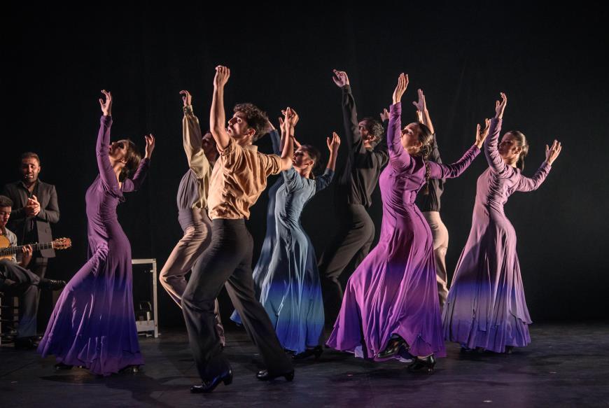 Aula Teatro Juan del Enzina Ballet Flamenco de Andalucía Salamanca Mayo 2018