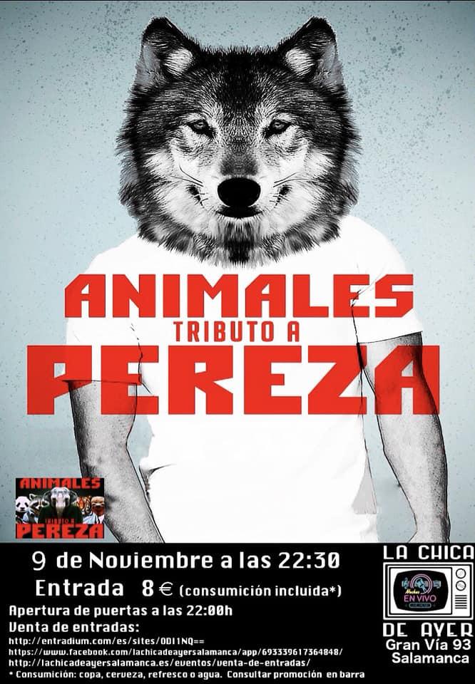 La Chica de Ayer Animales Salamanca Noviembre 2018