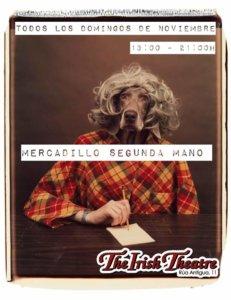 The Irish Theatre Mercadillo de Segunda Mano Salamanca Noviembre 2018