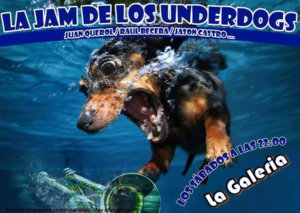 La Galería La Jam de los Underdogs Salamanca 2018