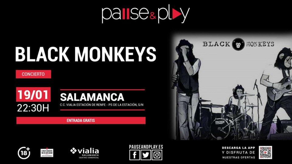 Centro Comercial Vialia Black Monkeys Salamanca Enero 2019