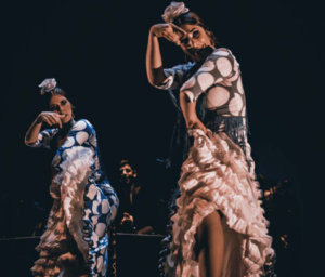 Centro de las Artes Escénicas y de la Música CAEM Impulso Salamanca Septiembre 2019