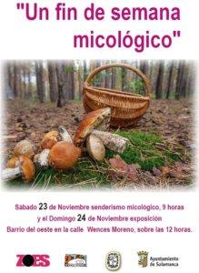 Salamanca Un fin de semana micológico ZOES Noviembre 2019