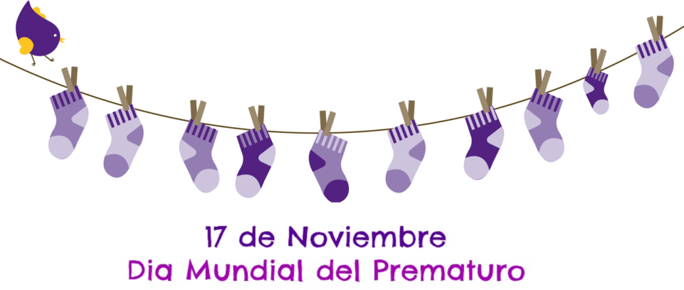 Puerta de Zamora Día Mundial del Nacimiento Prematuro Salamanca Noviembre 2019