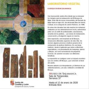 Museo de Salamanca Laboratorio vegetal. El Bosque de Béjar Noviembre diciembre 2019 enero 2020