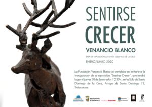 Sala de Exposiciones Santo Domingo de la Cruz Sentirse crecer. Venancio Blanco Salamanca 2020