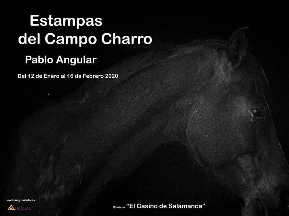 Casino de Salamanca Estampas del Campo Charro Enero febrero 2020