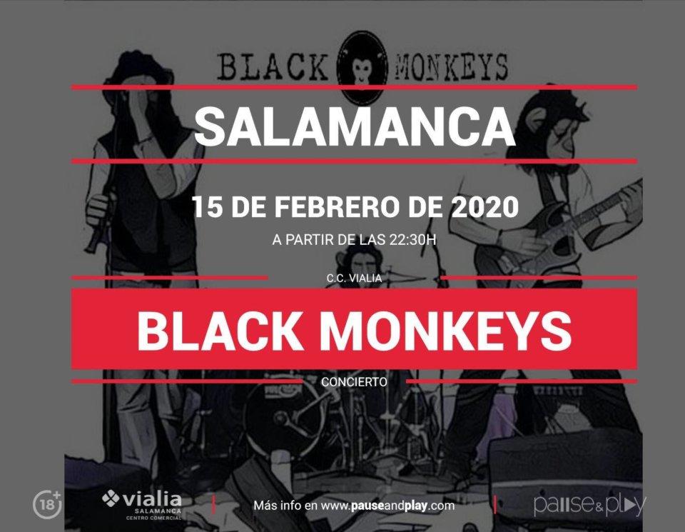 Centro Comercial Vialia Black Monkeys Salamanca Febrero 2020