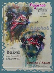 Raíces Pájaros Salamanca Enero febrero marzo 2020