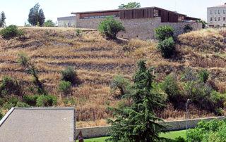 Ciudadanos por la Defensa del Patrimonio expresa sus reticencias a la urbanización de la ladera del Cerro de San Vicente
