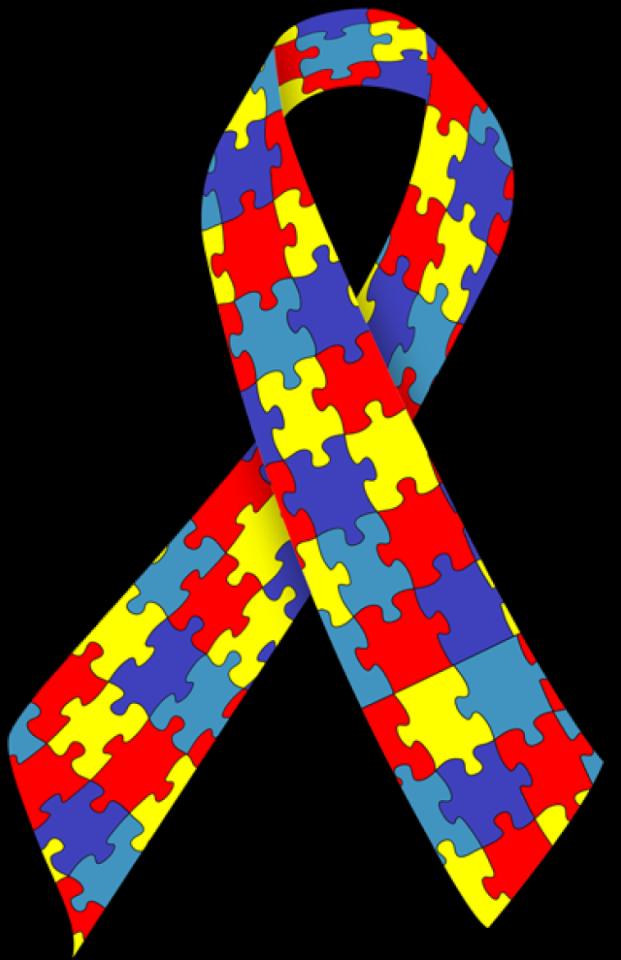 Puerta de Zamora Día Internacional del Síndrome de Asperger Salamanca Febrero 2021