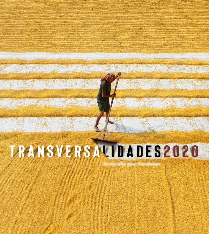 Museo de Salamanca Transversalidades Julio agosto 2021