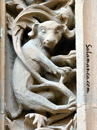 Bestiario de la Catedral Nueva de Salamanca... Perro