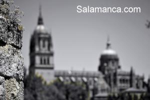 salamanca-catedral-88