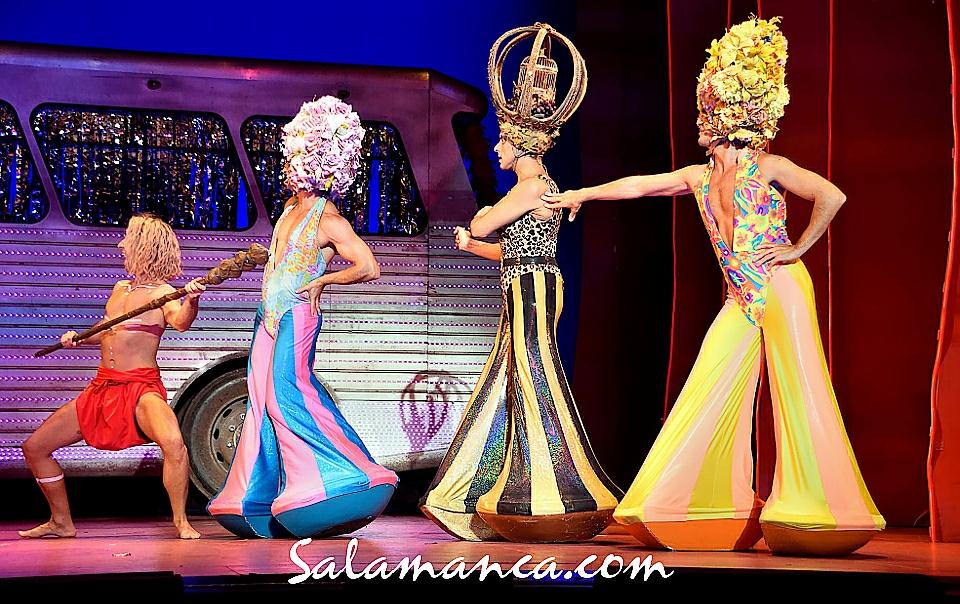Fotograf as de salamanca for Aida piscina reina del desierto