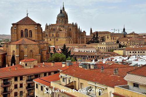 Salamanca, alto soto de torres