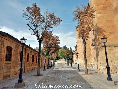 Salamanca, de otoño en las Úrsulas