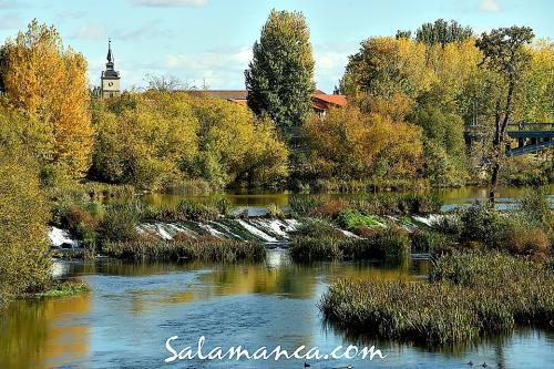 Salamanca se viste de otoño