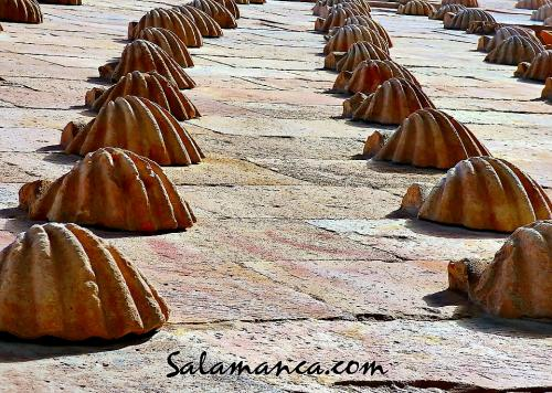 Salamanca, un mar de conchas