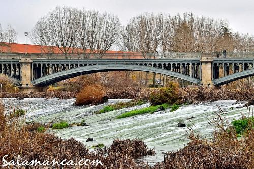 Salamanca y su puente de Enrique Estevan