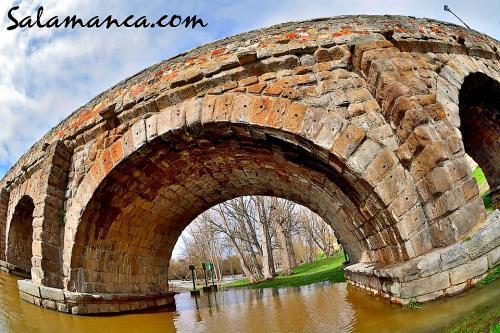El Tormes se estira por el Puente Romano