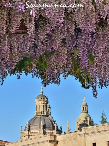 Salamanca, desde la calle Balmes ( y III)